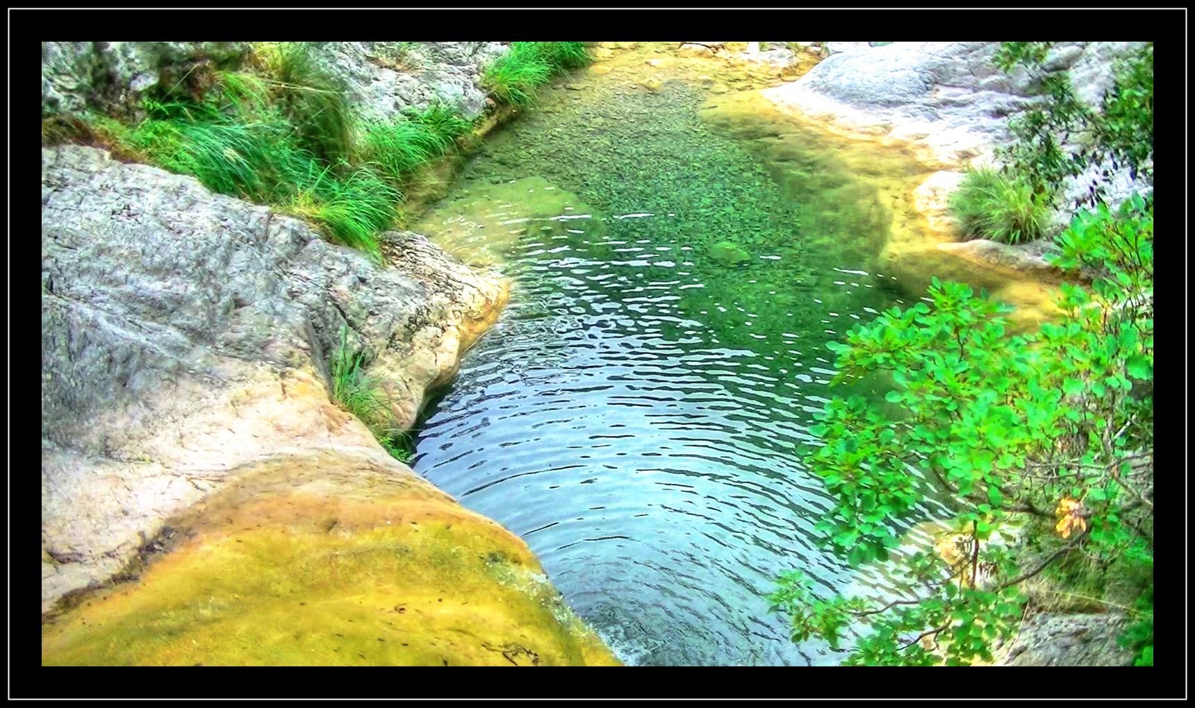 Canyon Rio Abellio