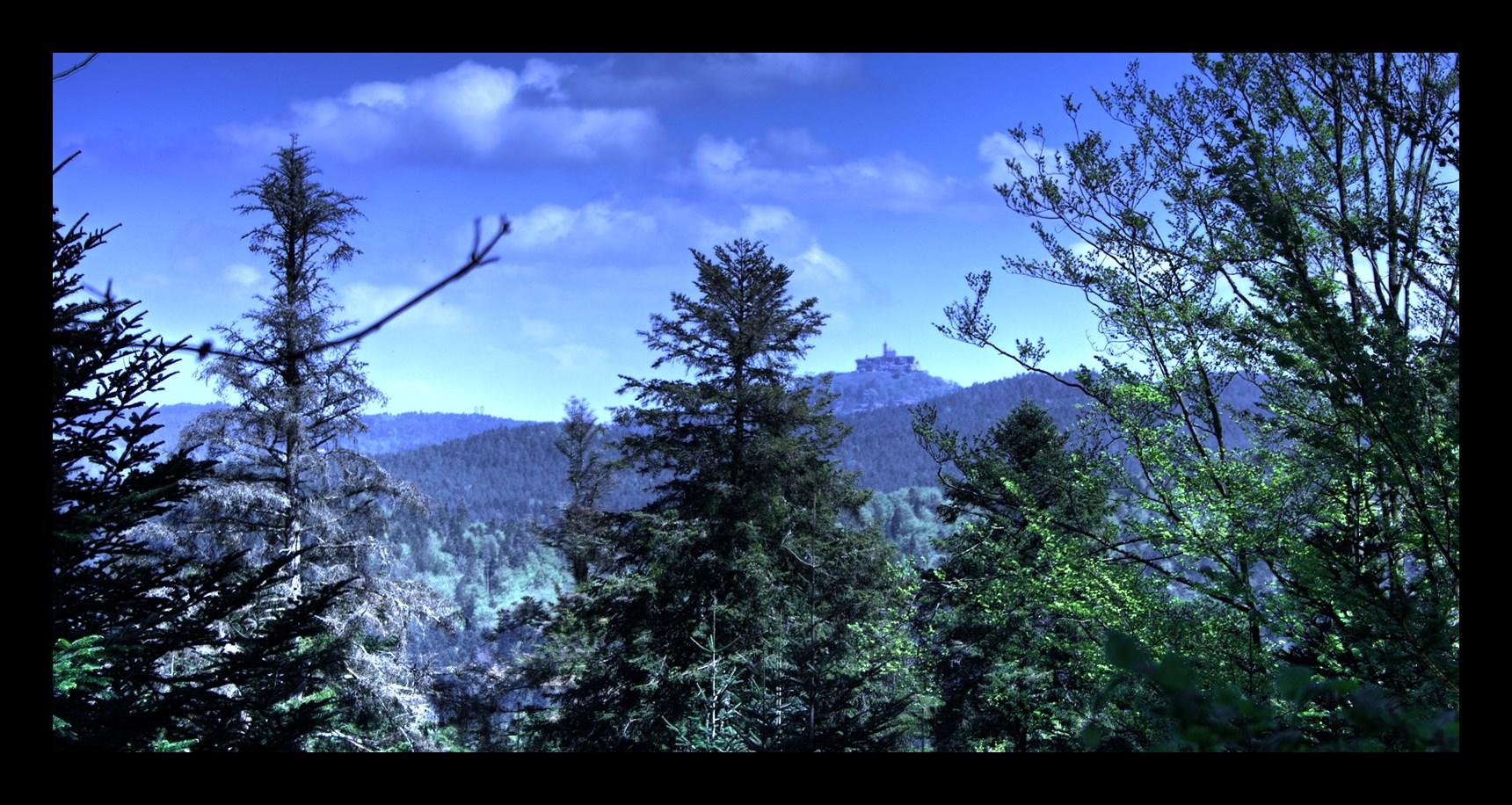 Harreberg tour des Picards + Col de l'Eichthal