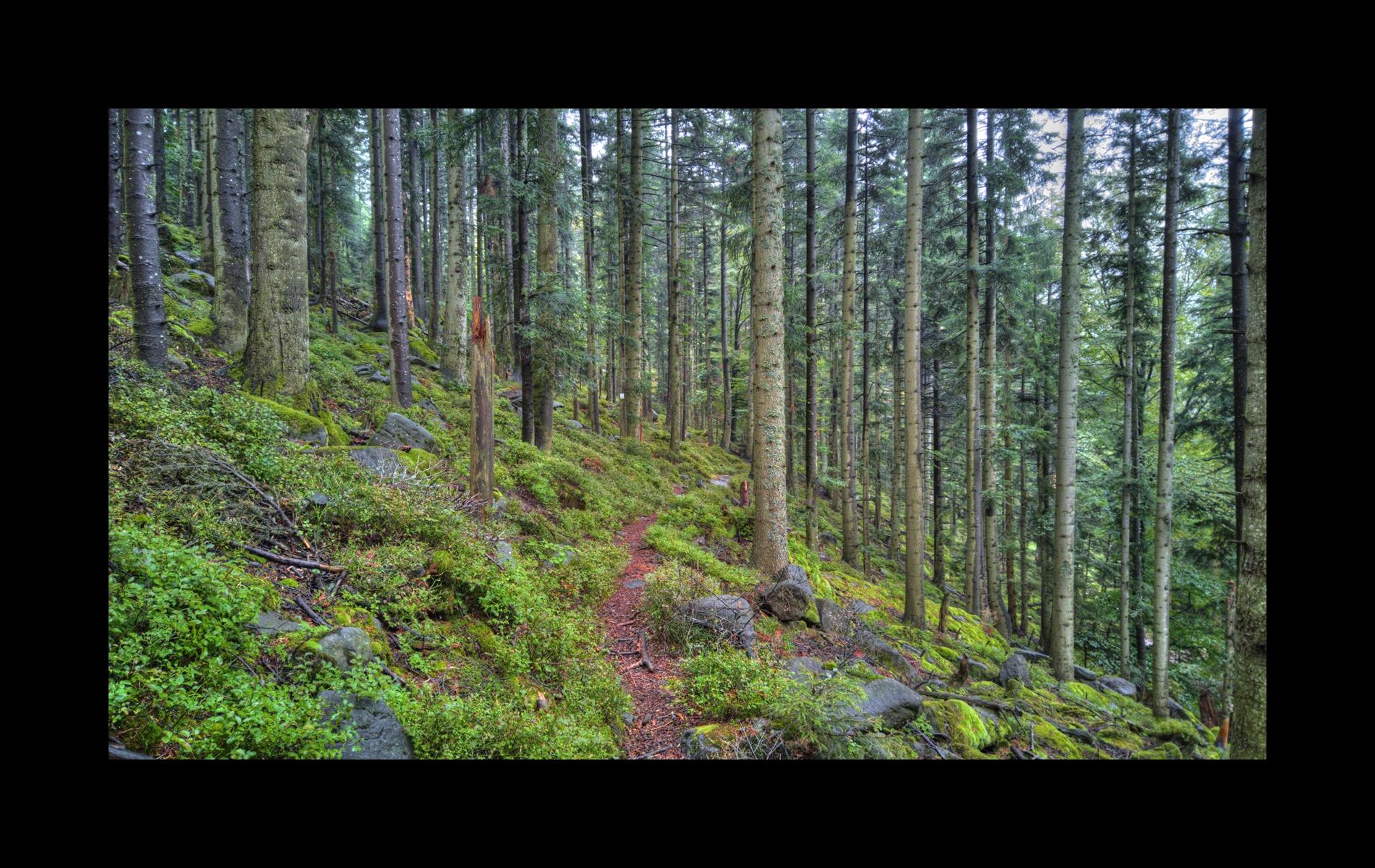 Col du Brechpunkt – Le Narion